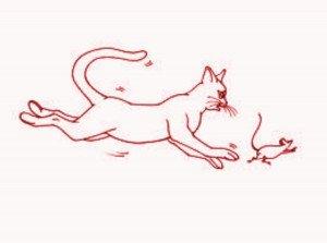 chat et sourisx